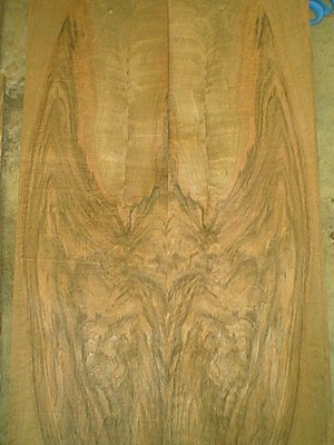 Circassian Walnut Veneer Bat
